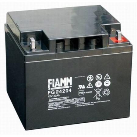 Аккумулятор FIAMM FG 24204 (12В/42Ач)