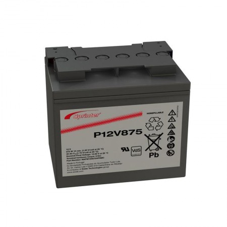 Аккумулятор Sprinter P12V875 (NAPW120875HP0MC)